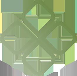 logo-disa2